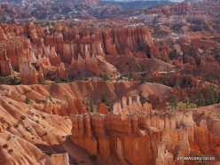 Braiso kanjono nacionalinis parkas (41)
