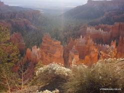 Braiso kanjono nacionalinis parkas (6)