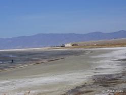 Didysis Druskos ežeras (Great Salt Lake) (2)