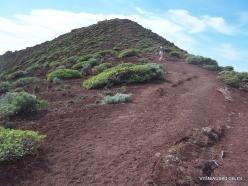 Near El Medano. Nature reserve Montaña Roja (4)