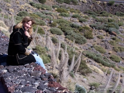 Teide National Park (15)