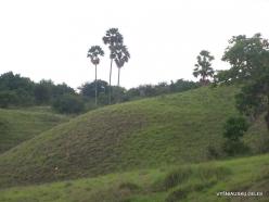 1 Komodo National Park. Rinca island (6)
