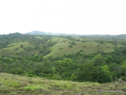 1 Komodo National Park. Rinca island (7)