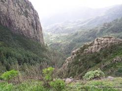 La Gomera. Garajonay National Park (4)