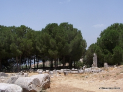 Qasr Naous Roman Temples (2)