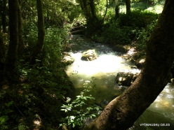 Wadi Kadisha (Kadisha Valley). Kadisha river