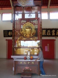 Pahang. Brinchang. Sam Poh Temple (7)