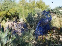 1 Las Vegasas. Ethel M kaktusų parkas (13)