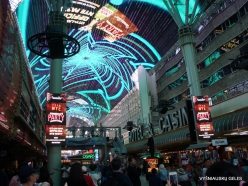 Las Vegasas. Fremont Street (4)