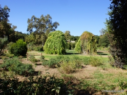 Los Andželas. Descanso botanikos sodas (4)