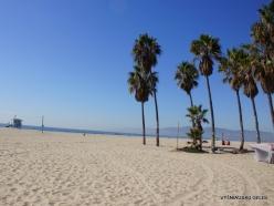 Los Andželas. Venecijos paplūdimys (5)