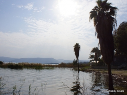 Tabha. Sea of Galilee (Lake Tiberias, Kinneret) (3)