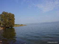 Tabha. Sea of Galilee (Lake Tiberias, Kinneret) (4)