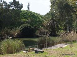 Yardenit. Jordan River (11)