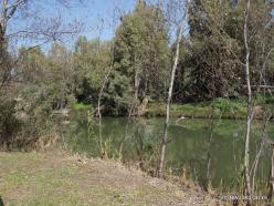 Yardenit. Jordan River (5)
