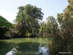 Yardenit. Jordan River (7)