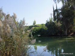 Yardenit. Jordan River (8)