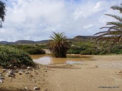 Itanos Beach (10)
