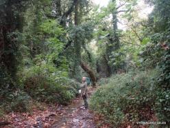 Richti Gorge (9)