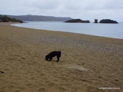 Vai Beach (5)