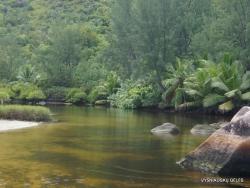 Seišeliai. Praslin. Anse Lazio River