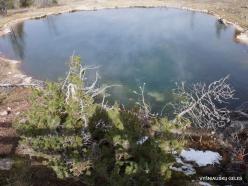 Jeloustono nacionalinis parkas. Fountain Paint Pot (14)