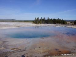 Jeloustono nacionalinis parkas. Midway Geyser Basin. Torquoise Pool (1)