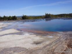 Jeloustono nacionalinis parkas. Midway Geyser Basin. Torquoise Pool (3)