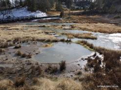 Jeloustono nacionalinis parkas. Mud Volcano Area (4)