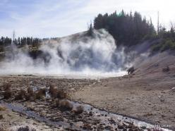 Jeloustono nacionalinis parkas. Mud Volcano Area (8)