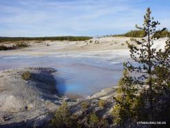 Jeloustono nacionalinis parkas. Norris Geyser Basin (17)