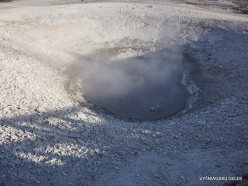 Jeloustono nacionalinis parkas. Norris Geyser Basin (20)