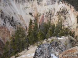 Jeloustono nacionalinis parkas. The Grand Canyon of the Yellowstone (15)