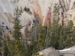 Jeloustono nacionalinis parkas. The Grand Canyon of the Yellowstone (19)