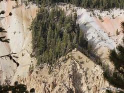 Jeloustono nacionalinis parkas. The Grand Canyon of the Yellowstone (22)