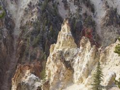 Jeloustono nacionalinis parkas. The Grand Canyon of the Yellowstone (3)