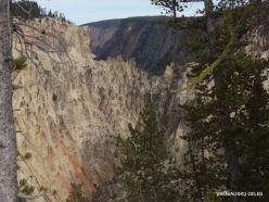 Jeloustono nacionalinis parkas. The Grand Canyon of the Yellowstone (7)