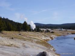 Jeloustono nacionalinis parkas. Upper Geyser Basin. Firehole River (5)