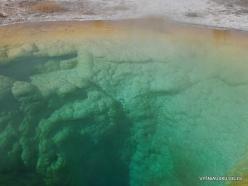 Jeloustono nacionalinis parkas. Upper Geyser Basin. Morning Glory Pool (4)