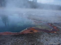 Jeloustono nacionalinis parkas. Yellowstone Lake area (11)