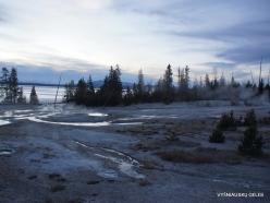 Jeloustono nacionalinis parkas. Yellowstone Lake area (12)