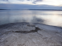 Jeloustono nacionalinis parkas. Yellowstone Lake area (24)