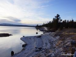 Jeloustono nacionalinis parkas. Yellowstone Lake area (30)