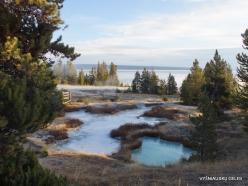 Jeloustono nacionalinis parkas. Yellowstone Lake area (32)