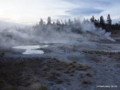 Jeloustono nacionalinis parkas. Yellowstone Lake area (8)