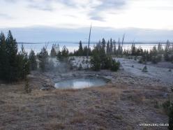 Jeloustono nacionalinis parkas. Yellowstone Lake area (9)