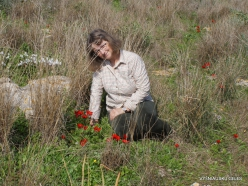 Hof Dor. Sharon Plain vegetation (batha) (11)