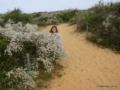 Near Netanya. Iris reserve (18)