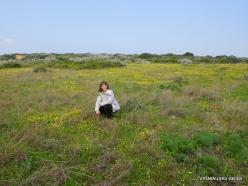 Near Netanya. Iris reserve (29)