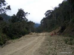 West Papua. Arfak Mountains. Hingk (12)